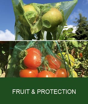 Fruit Protection