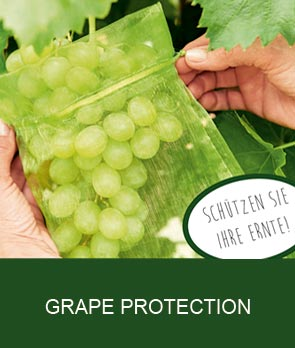 Grape Protection